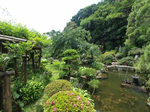 妙蔵寺の中庭